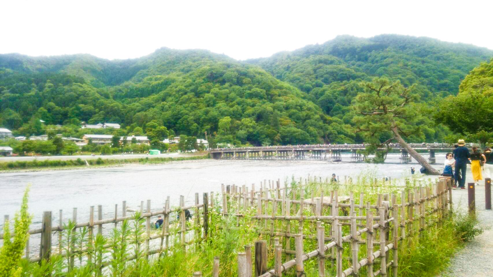 嵐山 観光 アジョシ 京都 韓国料理