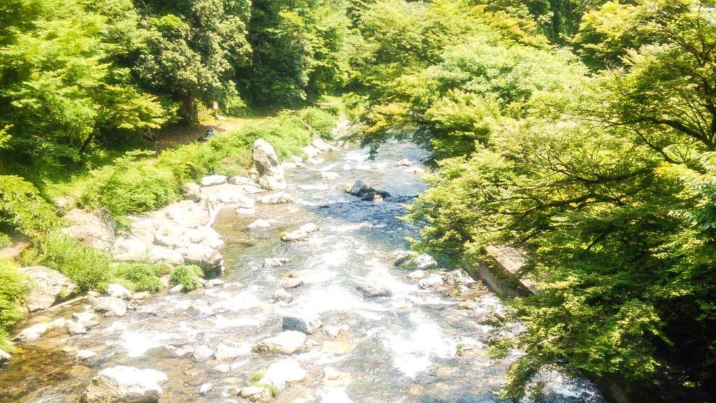 高尾 清滝 嵐山 観光 アジョシ 京都 韓国料理
