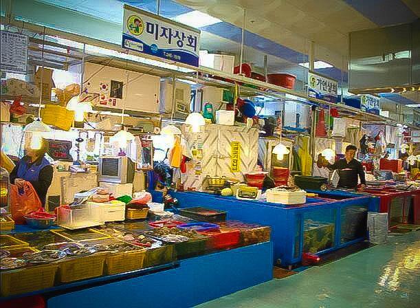 チャガルチ市場 釜山 アジョシ 京都 韓国料理